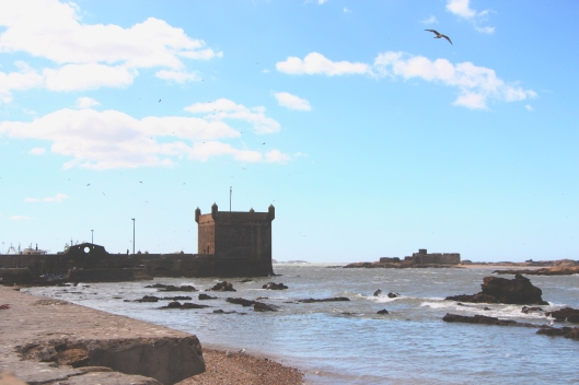 Essaouira Seaside